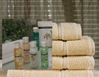 bathroom setting with towels, shampoo, and body wash